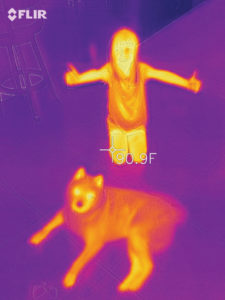 Emerald Coast Energy Solutions Thermal Imaging