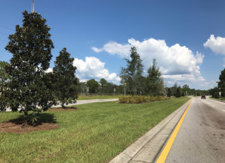 Scenic 331 Landscaping