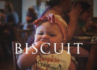Sean Dietrich Biscuit