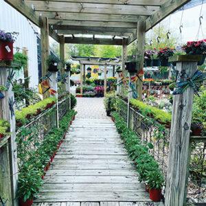 the porch life boutique2